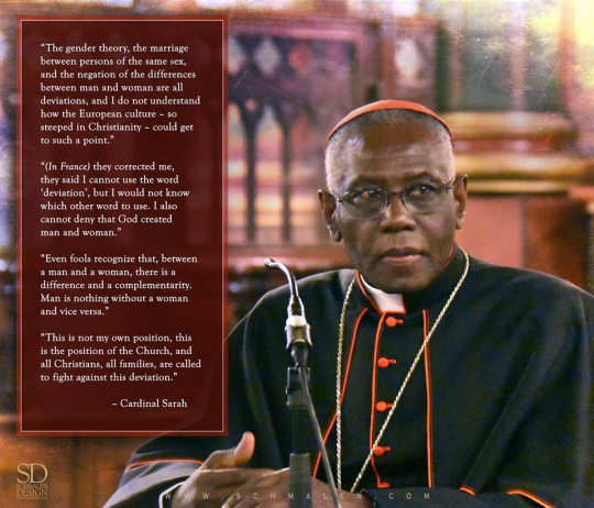 tradcatfem, cardinal sarah, differences between men and women, physical differences between men and women, psychological difference between man and woman, male and female differences facts, personality differences between male and female, catholic teaching on gender, gender issue in the catholic church, the catholic church and gender, gender roles catholic church,